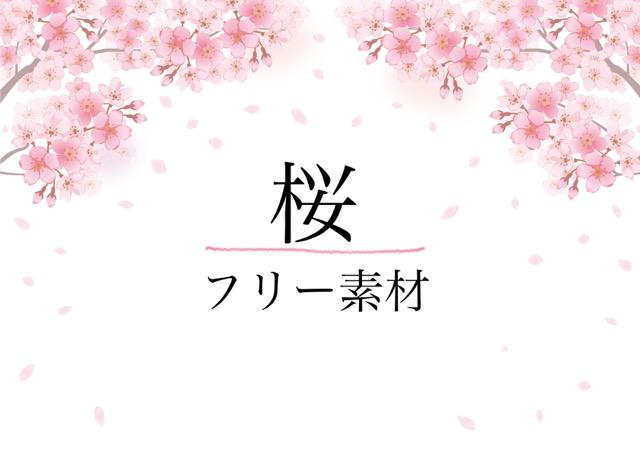 桜のフリー素材のアイキャッチ